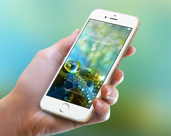 Обои iPhone 6