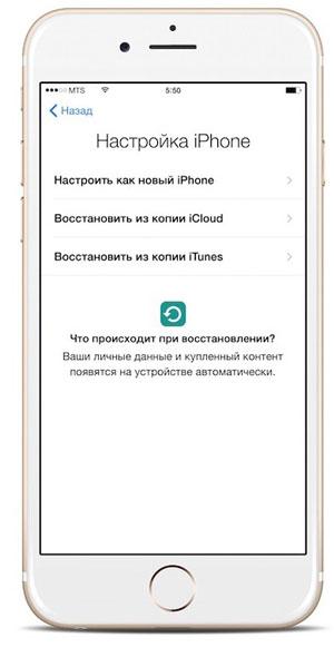 Снимок с экрана - настройка iPhone 6