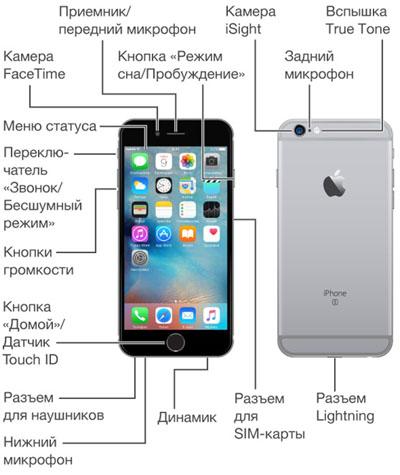 Обозначение разъемов и кнопок на iPhone 6