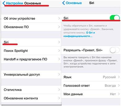 Пункт Siri в меню настройки основные