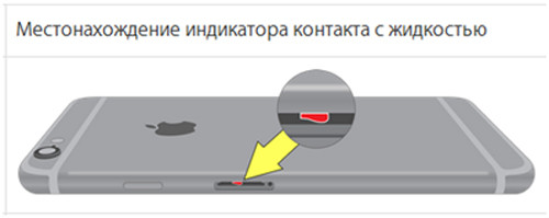 iPhone и индикатор контакта с жидкостью